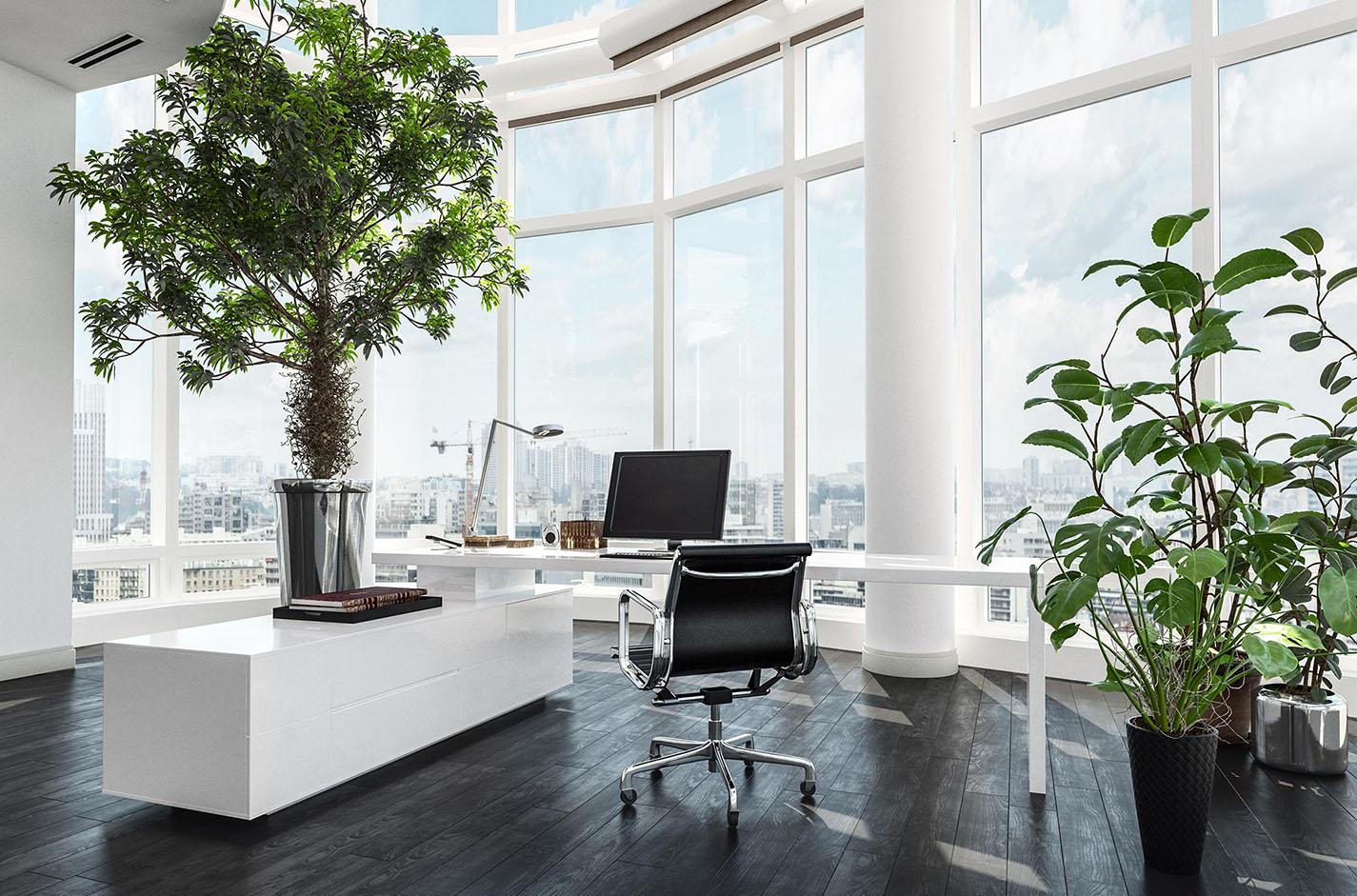 Immobilier de bureau grandes tendances d'aménagement